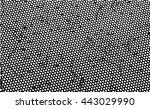 black and white background... | Shutterstock .eps vector #443029990