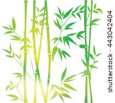 decorative bamboo branches.... | Shutterstock .eps vector #443042404