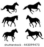 horses silhouettes collection   ... | Shutterstock .eps vector #443099473