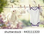 Stock photo baby clothes hanging on the clothesline 443111320