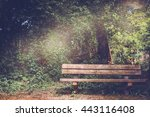 blank old wooden bench in a...