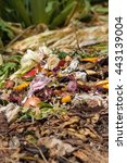 Small photo of Bio waste. Rubbish with pieces of lemons, onions and others fruits in decomposition.