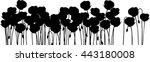silhouette of poppies   Shutterstock .eps vector #443180008