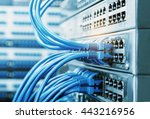 network cables connected in... | Shutterstock . vector #443216956