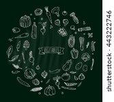 hand drawn doodle vegetables... | Shutterstock .eps vector #443222746