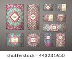 big templates set. business... | Shutterstock .eps vector #443231650