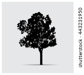 vector tree silhouettes | Shutterstock .eps vector #443231950