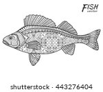 fish. hand drawn stylized sea... | Shutterstock .eps vector #443276404