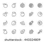 vector fruits icon set in thin... | Shutterstock .eps vector #443324809