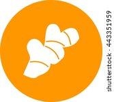 ginger   Shutterstock .eps vector #443351959