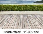 wooden terrace near the sea... | Shutterstock . vector #443370520