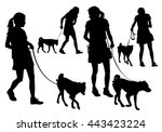 girl walking with a dog on a... | Shutterstock .eps vector #443423224