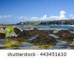 Seaweed Covered Rocks On The...