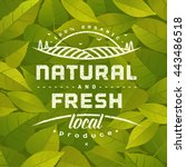 natural and fresh. healthy... | Shutterstock .eps vector #443486518