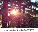 spectrum through the trees | Shutterstock . vector #443487976
