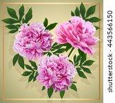 floral design. pink flowers... | Shutterstock .eps vector #443566150