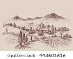 vineyard sketch. wine label... | Shutterstock .eps vector #443601616