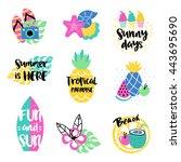 summer vector elements... | Shutterstock .eps vector #443695690