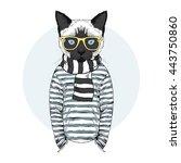 cat dressed up in frock  furry... | Shutterstock .eps vector #443750860