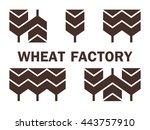 modern logo with wheat  ... | Shutterstock .eps vector #443757910