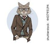 Cat Dressed Up In Tweed Jacket...