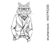 cat dressed up in tweed jacket  ... | Shutterstock .eps vector #443795200