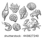 Set Sea Shell  Coral  Crab And...