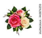 rose flowers and buds bouquet... | Shutterstock . vector #443876353