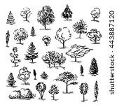set of hand drawn of trees. ink ... | Shutterstock .eps vector #443887120