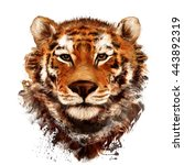 tiger .watercolor illustration  | Shutterstock . vector #443892319