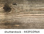 old wooden hut in the... | Shutterstock . vector #443910964