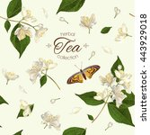 vector herbal tea seamless... | Shutterstock .eps vector #443929018