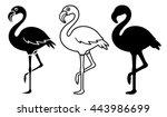 Flamingo Silhouettes Set...