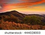 Foothills Of Monteverde Cloud...