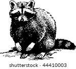 racoon | Shutterstock .eps vector #44410003
