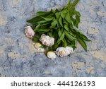 pink  peonies | Shutterstock . vector #444126193