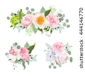 stylish various flowers... | Shutterstock .eps vector #444146770