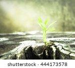 nature background concept  soft ... | Shutterstock . vector #444173578
