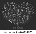 hand drawn doodle vegetables... | Shutterstock .eps vector #444234073