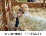 girl hugging lamb on the farm | Shutterstock . vector #444343156