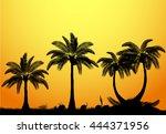vector palm tree silhouette  | Shutterstock .eps vector #444371956