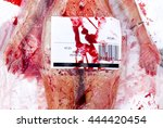 vegans and vegetarians animal... | Shutterstock . vector #444420454