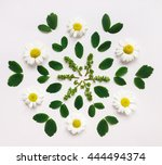floral decorative mandala with... | Shutterstock . vector #444494374