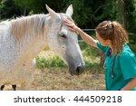 veterinary great performing a...   Shutterstock . vector #444509218