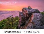 sunset after storm at high rock ... | Shutterstock . vector #444517678