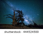 the southern arm of the... | Shutterstock . vector #444524500