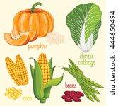 set of vegetables mix vector... | Shutterstock .eps vector #444650494