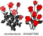 Stock vector illustration with isolated black and red roses sketches 444687580