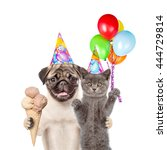 Cat And Dog In Birthday Hats...