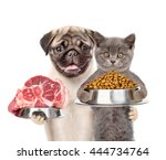 cat and dog holding bowl of dry ... | Shutterstock . vector #444734764